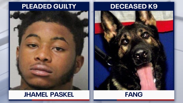 19-year-old man sentenced to 25 years for shooting, killing Florida K-9