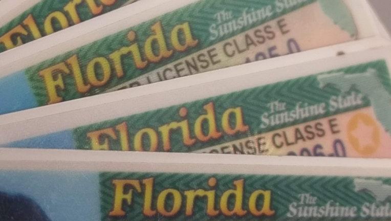 florida driver's licenses wtvt