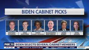Transition begins for Biden along with cabinet picks