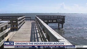 Grading the quality of Indian River Lagoon