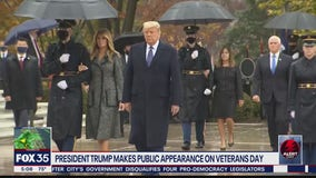 Trump makes appearance on Veterans Day
