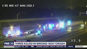 2 siblings killed in wrong-way crash on I-95