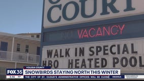Snowbirds staying north this winter