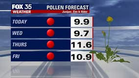 Are you sneezing? Pollen count high in Central Florida this week