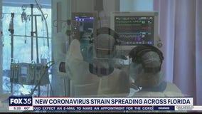 New COVID-19 strain spreading in Florida