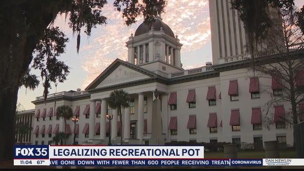 Legalizing recreational pot in Florida