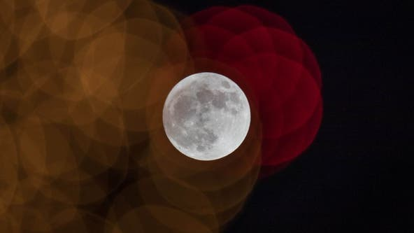The 'Wolf Moon' will light up the night sky this week: How to get the best view