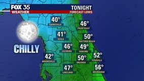 Weather Forecast: February 20