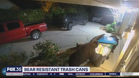 Bear-resistant trash can effectiveness shown on camera