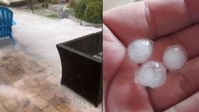 'Buried in ice!': Hailstorm creates winter wonderland in Daytona Beach