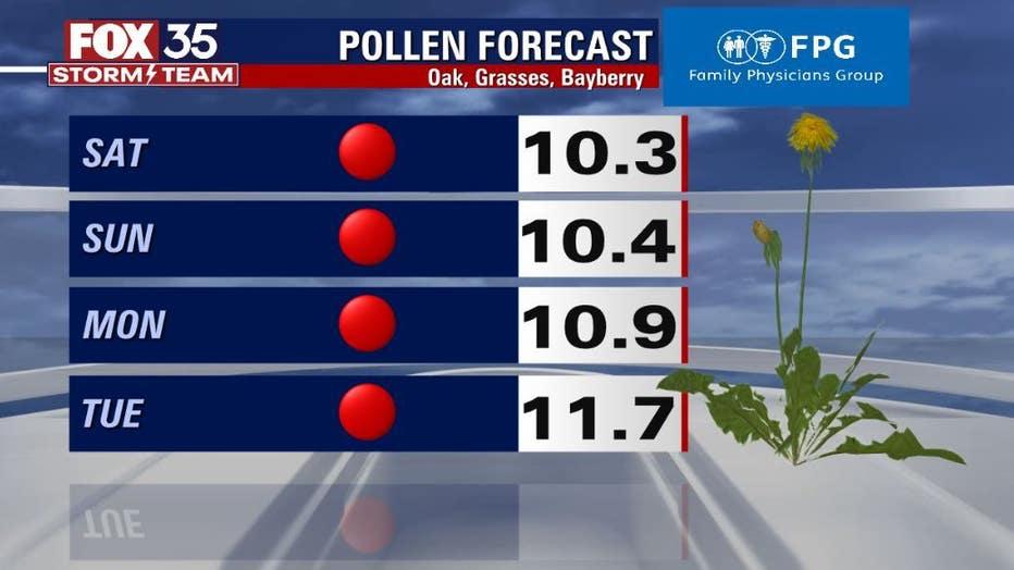 b99ed381-pollen-2.jpg
