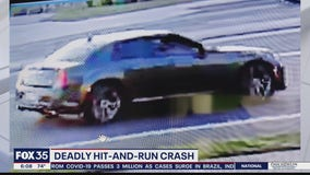 Tips sought in deadly hit and run