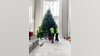 Facebook grant helps Florida Christmas tree delivery service survive pandemic