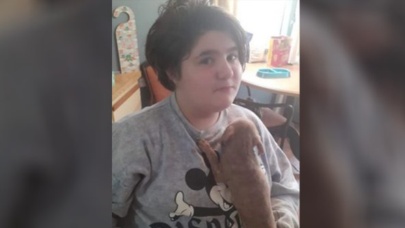 Deputies: 11-year-old girl dies trying to save dogs from Florida house fire