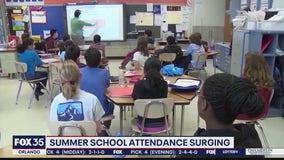 Summer School attendance at all time high