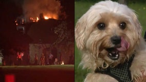 Dog wakes up homeowner as fire tears through Orange County home