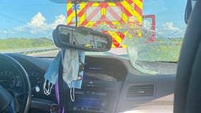 PHOTOS: Turtle crashes through windshield on Florida Turnpike